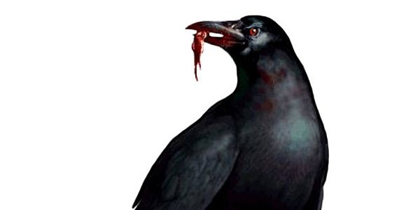 "Corvos: ""Os Pássaros"" de Resident Evil"